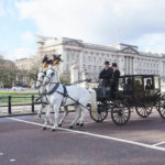Smallbone Horse & Carriage Buckingham Palace Gallery 2